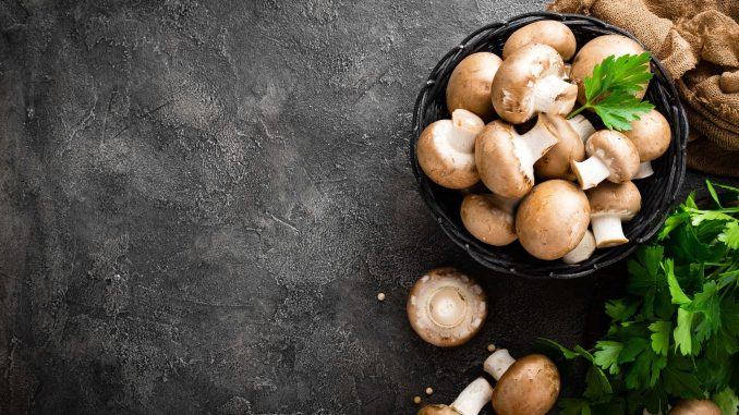 Ciuperci - rețete