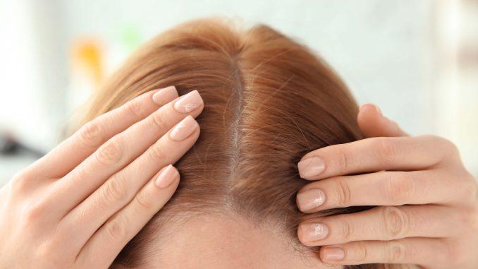 modalități de a ușura părul cu mușețel